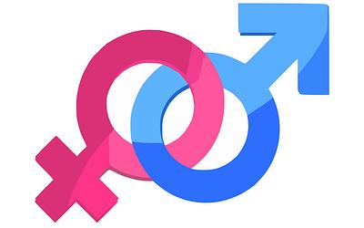 L'index égalité Hommes Femmes, une loi inspirée de l'égalité vaches/taureaux en Normandie